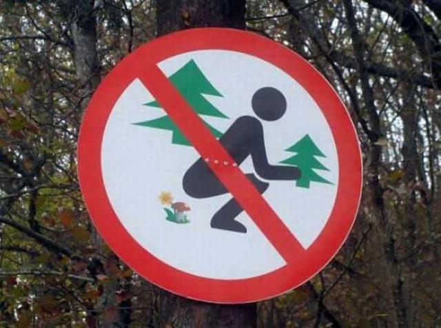 Предупреждение, что лес – это не туалет