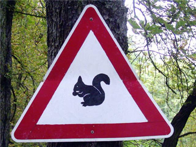 Необычные знаки