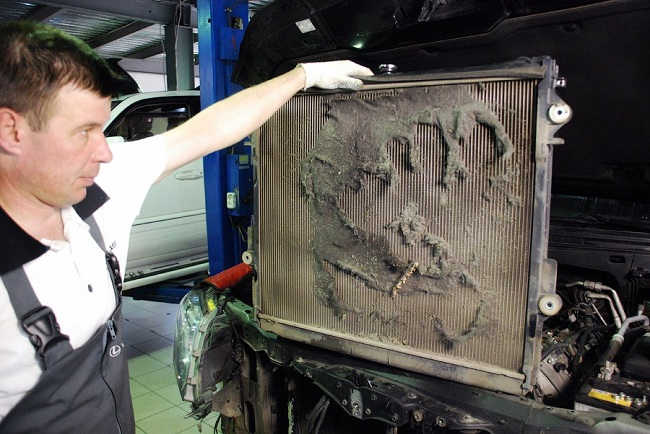 Одна из причин перегрева двигателя — засорённый радиатор