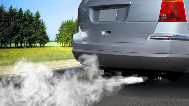 Современный городской житель не понаслышке знает, что такое выхлопные газы