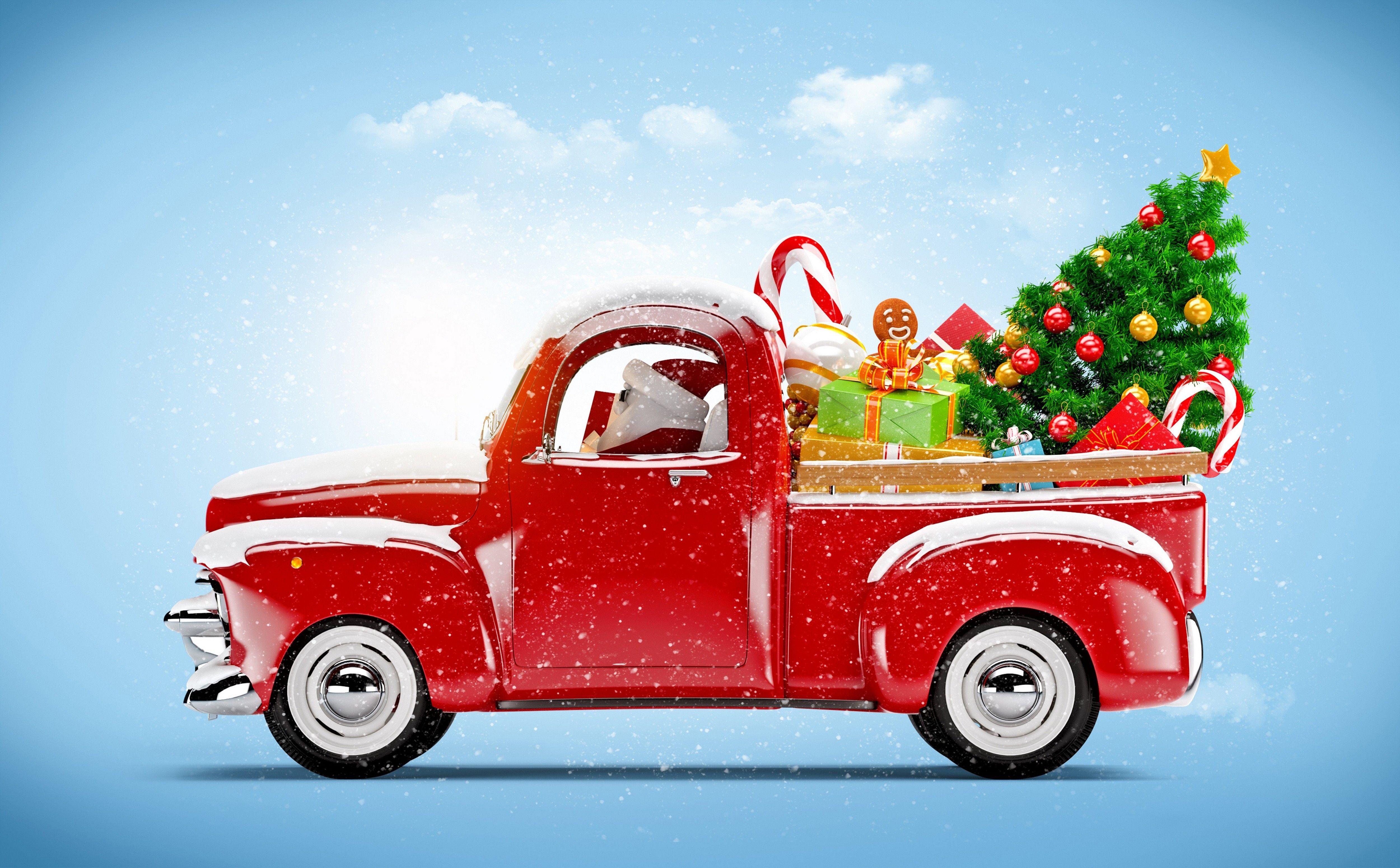 Перевозим новогоднею ель в машине