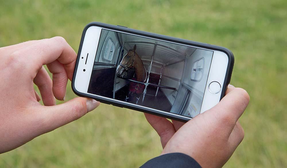 Сигнал Cargo Sense поступает на мобильный