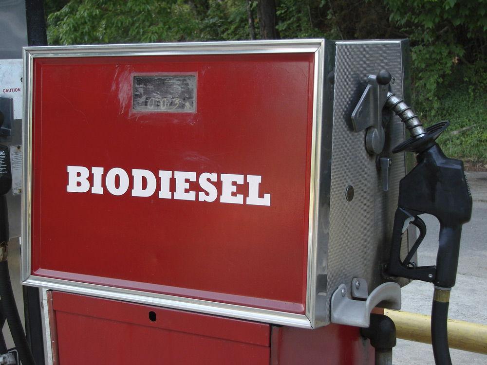 Биодизельная колонка