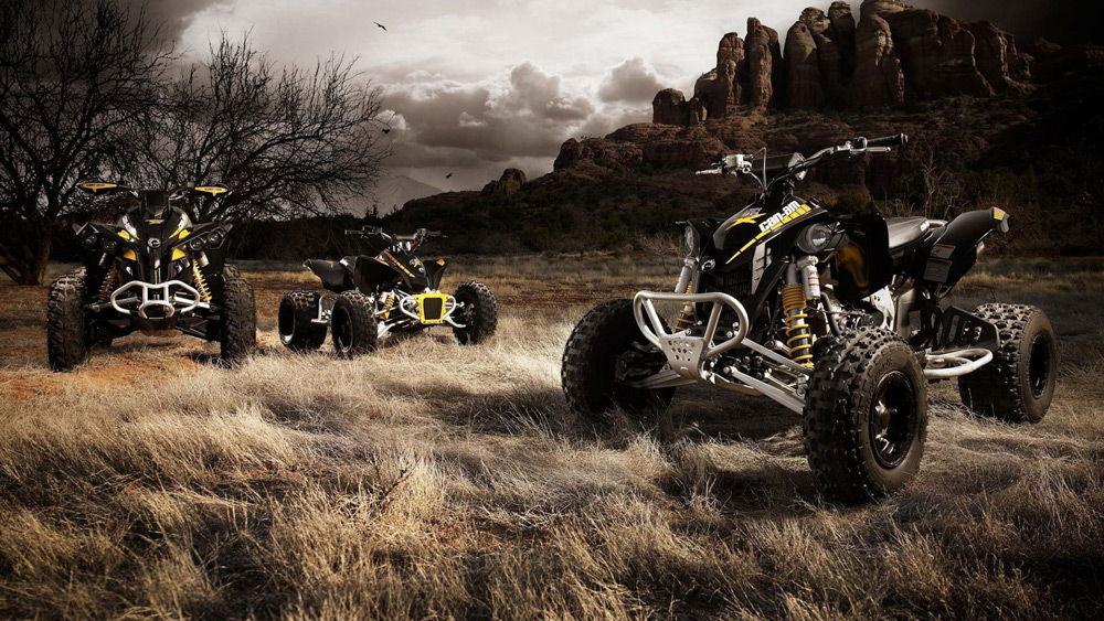 Квадроциклы на траве