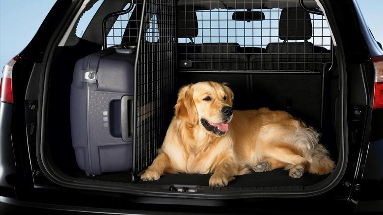 Отсек для перевозки собак
